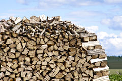 Firewood in Nature - Wood Stock Photos