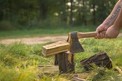 Firewood and old axe Stock Photography