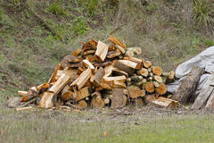 Firewood Pile Royalty Free Stock Photos