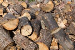 Firewood pile Stock Image