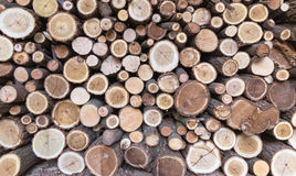 Firewood. A pile of chopped wood Royalty Free Stock Images