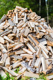 Firewood in a pile in a forest Stock Photos