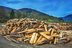 Firewood pile. Nature fuel Royalty Free Stock Photos