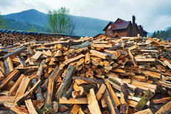 Firewood pile near wooden house. Nature fuel Stock Images