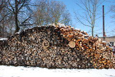 Firewood pile next to boiler house. Stock Images