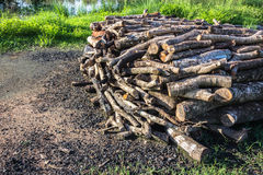 Firewood. Pile of firewood prepared to make charcoal Stock Image