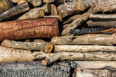 Firewood. Pile of firewood prepared to make charcoal Stock Photos
