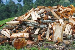 Firewood Pile For Winter Stock Image