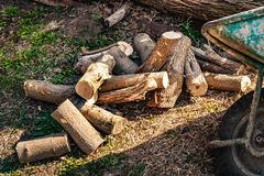 Firewood preparation. A pile of chopped wood royalty free stock photography