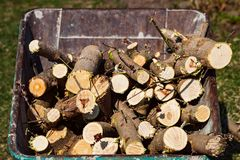 Firewood preparation. A pile of chopped wood royalty free stock photo