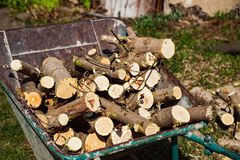 Firewood preparation. A pile of chopped wood stock photos