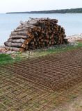 Firewood and reinforced steel on Olib Royalty Free Stock Image