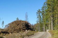 Firewood by roadside Royalty Free Stock Image