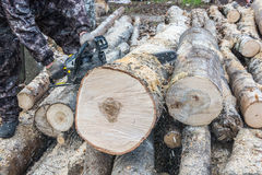 The firewood. Sawing logs with a chainsaw. Sawdust flying in different directions stock photos