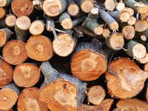 Firewood sawn stack. A pile of chopped wood royalty free stock photo