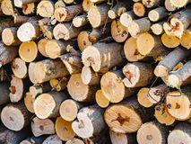 Firewood sawn stack. A pile of chopped wood royalty free stock photography