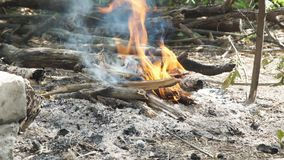 Firewood is smoked and then ignited in campfire. Firewood is smoked and then ignited in the campfire stock video footage