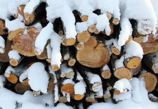 Firewood in snow. Stock Photos