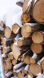 Firewood in the snow, fallen in the snow royalty free stock photography