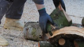 Firewood split, piled up, winter fuel, woodpile stock video