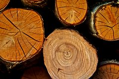 Firewood stack Royalty Free Stock Photos