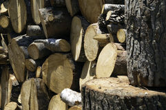 Firewood. Stack of the birch firewood Stock Image