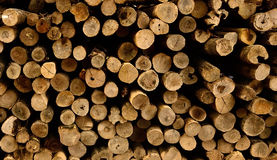 Firewood stack. Cross section of firewood stack royalty free stock image