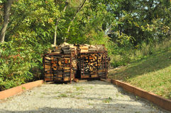 Firewood stack. A  stack of fire wood,in a sunny day,in the middle of green trees Royalty Free Stock Photography
