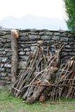 Firewood stack Stock Photo