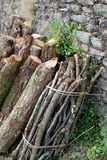 Firewood stack Royalty Free Stock Photo