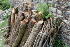 Firewood stack Royalty Free Stock Photography