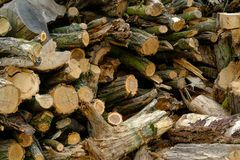 Firewood in stack Stock Photo
