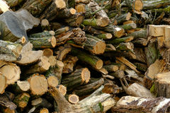 Firewood in stack Royalty Free Stock Photography