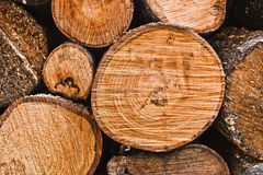 Firewood stack Stock Photography