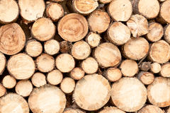 Firewood stacked Royalty Free Stock Photography