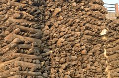 Firewood stacked Royalty Free Stock Image