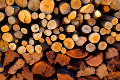 Firewood stacked fire wood different sizes Royalty Free Stock Image