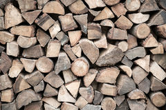 Firewood stacked in heap Stock Images