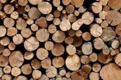 Free Firewood Stacked In The Woodpile Royalty Free Stock Images - 26891699