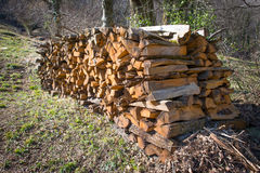 Firewood stacked Stock Image
