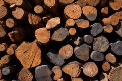Firewood stacked and prepared for winter Pile of wood logs Royalty Free Stock Photos