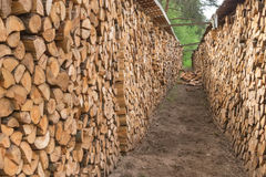 Firewood stacked in a row Royalty Free Stock Photos
