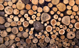 Firewood stacked up in a pile Stock Images