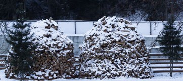 Firewood stacked in winter Stock Images