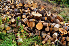 Firewood stacked in the woodpile Royalty Free Stock Images