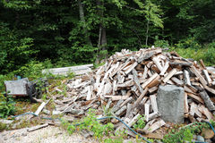 Firewood stockpiled. Stock Photo
