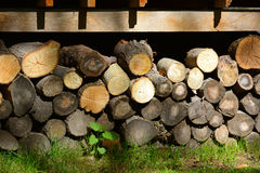 Firewood. Store firewood. Wood burned as fuel stock photography