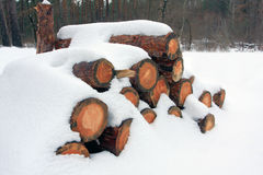 Firewood store under snow Royalty Free Stock Image