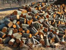 Firewood store Stock Photos