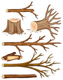 Firewood and stump trees. Illustration Royalty Free Stock Image